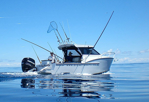 sport-fishing-cabin-cruiser
