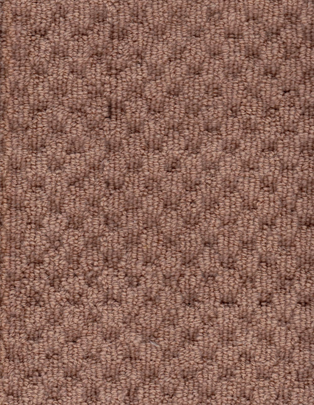 Boat Floor Covering / Wool / Carpet   Camel Textured