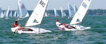 Mainsail / for sailing dinghies