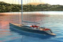 Cruising sailing yacht / deck saloon / custom