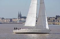 Cruising sailing yacht / open transom / aluminum / custom