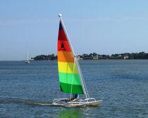 Recreational sport catamaran / cat boat