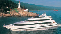 Raised pilothouse mega-yacht / cruising / aluminum / custom