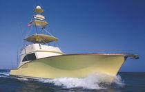 Sport-fishing motor yacht / convertible / flybridge / planing hull