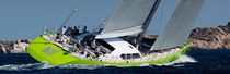 Cruising sailing yacht / carbon / open