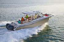 Outboard express cruiser / sport-fishing / with T-top