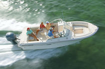 Outboard runabout / dual-console / bow-rider / 10-person max.