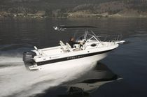 Outboard walkaround / 8-person max. / with T-top