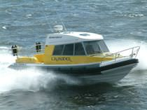 Inboard passenger boat / inflatable boat / semi-rigid / with enclosed cockpit