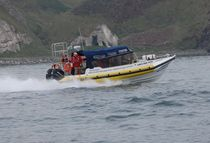 Outboard sightseeing boat / inflatable boat / semi-rigid