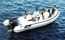 Inboard inflatable boat / semi-rigid / side console / 12-person max.