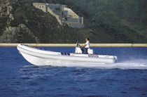 Inboard utility boat / rigid hull inflatable boat