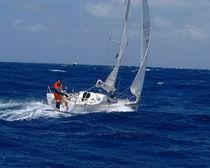 Cruising-racing sailboat / open transom / lifting keel