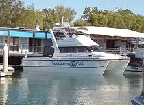Catamaran express cruiser / inboard / flybridge / sport-fishing
