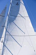 Sailboat mast / carbon