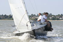 Mainsail / for one-design sport keelboats