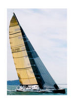 Storm jib / for cruiser-racer sailboats