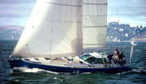 Mainsail / for cruising sailboats / tri-radial cut / laminated