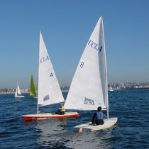 Mainsail sail / for sailing dinghies / Laser