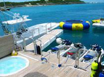 Yacht gangways / rotary / hydraulic
