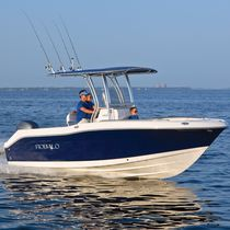 Outboard center console boat / sport-fishing / 8-person max. / with T-top