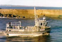 Inboard utility boat / catamaran