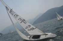 Jib / for one-design sport keelboats / 2.4 meter / cross-cut