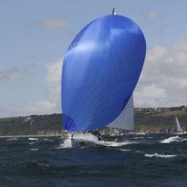 Spinnaker / for one-design sport keelboats / J80