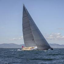 Mainsail / for sailing superyachts