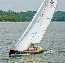 Genoa / for cruising sailboats / cross-cut / Dacron®