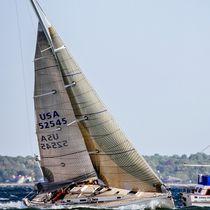 Storm jib / for cruising sailboats