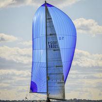 Symmetric spinnaker / for racing sailboats