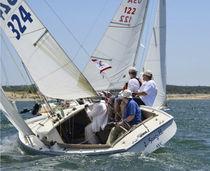 Mainsail / for one-design sailboats