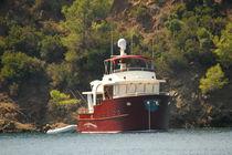 Cruising motor yacht / trawler / wheelhouse / displacement hull