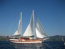 Motorsailer sailing yacht / cruising / classic / open transom