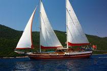 Cruising sailing yacht / classic / open transom / 8-cabin