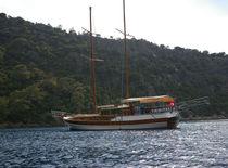 Classic sailing yacht / cruising / open transom / 4-cabin