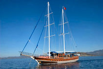 Classic sailing yacht / cruising / open transom / 6-cabin