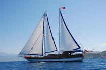 Classic sailing yacht / cruising / open transom / 10-cabin