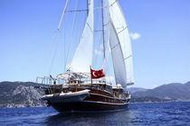 Cruising sailing super-yacht / classic / open transom / 7-cabin