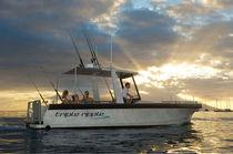 Inboard center console boat / sport-fishing / yacht tender / sundeck