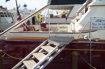 Boat ladder / lateral / swim / platform