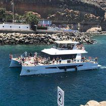 Catamaran motor yacht / charter / flybridge