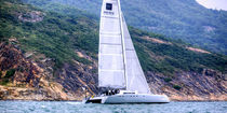 Catamaran / racing / open transom / 2-cabin
