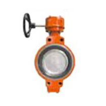 Butterfly marine valve / for ships
