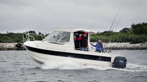Outboard cabin cruiser / hard-top / sport-fishing / 8-person max.