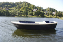 Inboard runabout / electric / dual-console / 8-person max.