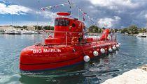 Inboard glass-bottom boat