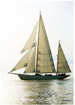 classic sail (custom-made) SY SYLVA ROLLY TASKER SAILS