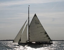 classic sail  Gowen Ocean Sailmakers